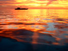 Sand & Sea Gallery - Pictures of Beaches, Rivers and Seascapes plus Underwater Shots